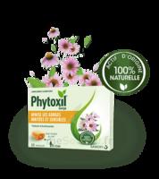 Phytoxil Pastilles Gorge Pastilles Adulte Enfant +12 Ans B/20 à LABENNE