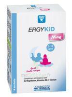 Ergykid Mag Poudre Solution Buvable 14 Sachets à LABENNE