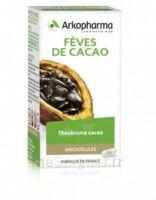 Arkogélules Cacao Gélules Fl/45 à LABENNE