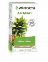 Arkogélules Ananas Gélules Fl/45 à LABENNE
