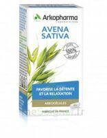 Arkogélules Avena Sativa Gélules Fl/45 à LABENNE