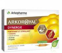 Arkoroyal Dynergie Ginseng Gelée Royale Propolis Solution Buvable 20 Ampoules/10ml à LABENNE