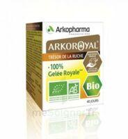 Arkoroyal 100% Gelée Royale Bio Gelée Pot/40g à LABENNE