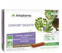 Arkofluide Bio Ultraextract Solution Buvable Confort Digestif 20 Ampoules/10ml à LABENNE