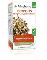 Arkogélules Propolis Bio Gélules Fl/45 à LABENNE