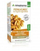 Arkogélules Fenugrec Bio Gélules Fl/40 à LABENNE