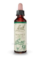 Fleurs De Bach® Original Walnut - 20 Ml à LABENNE