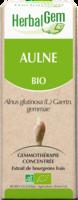 Herbalgem Aulne Macerat Mere Concentre Bio 30 Ml à LABENNE