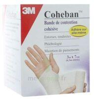 Coheban, Blanc 3 M X 7 Cm à LABENNE