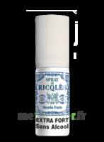 Ricqles Spray Buccal Sans Alcool Menthe 15ml à LABENNE