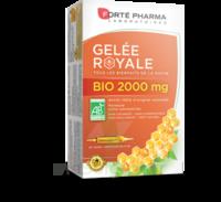 Forte Pharma Gelée Royale Bio 2000 Mg Solution Buvable 20 Ampoules/15ml à LABENNE
