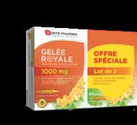 Forte Pharma Gelée Royale 1000 Mg Solution Buvable 2*b/20 Ampoules/10ml à LABENNE