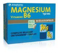 Arkovital Magnésium Vitamine B6 Gélules B/120 à LABENNE