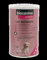 Biocanina Lait Poudre Maternisé B/400g à LABENNE