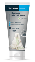 Biocanina Shampooing éclat Poils Blancs 200ml à LABENNE
