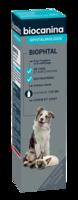 Biophtal Solution Externe 125ml à LABENNE