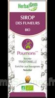 Herbalgem Sirop Bio Des Fumeurs 150ml à LABENNE