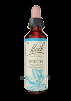 Fleurs De Bach® Original Beech - 20 Ml à LABENNE