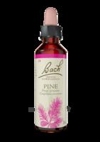 Fleurs De Bach® Original Pine - 20 Ml à LABENNE