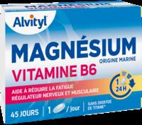 Govital Magnésium Vitamine B6 Comprimés B/45 à LABENNE