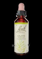 Fleurs De Bach® Original Olive - 20 Ml à LABENNE