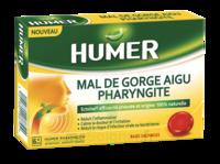 Humer Pharyngite Past Mal De Gorge Baies Sauvages à LABENNE